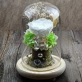 Telihome Día de San Valentín DIY Flor eterna Regalo Caja de Regalo de la Cubierta de Cristal Rosa Adornos de Flores secas Creativas Flores Hechas a Mano, A4