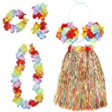 #6: Imported Color Hawaiian Tropical Hula Luau Grass Dancer Skirt and Bra Set