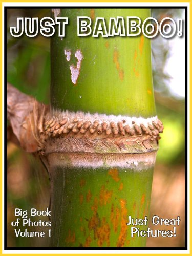 Just Bamboo Pictures! Photos and Pictures, Vol. 1 (English (Big Bamboo Plants)