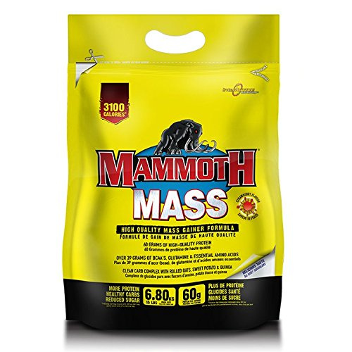 interactive-nutrition-mammoth-mass-68kg-strawberry