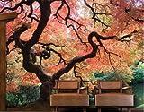 Smartdeco 400 x 280 cm, Motiv mit Kleber, 1 Stück, Japanischer Garten