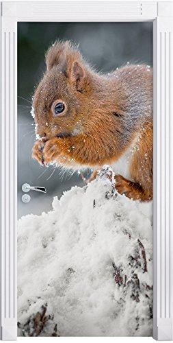 piccolo-scoiattolo-in-inverno-murale-formato-200x90cm-telaio-della-porta-adesivi-porta-porta-decoraz