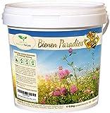 Bienen Paradies - Blühfreudige Bienenweide und Gründünger Mischung (2,5 kg/ausreichend für 750 bis 1.250 m²)