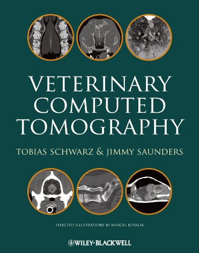Ct-scanner (Veterinary Computed Tomography (English Edition))