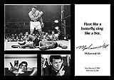 Muhammad Ali 20�New Tribute Poster�A3�Legend�Citation Célèbre de Boxe�Documents�Gym�Citation Panneau Poster Photo, Sport, boxe