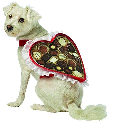 Rasta Imposta Chocolate Box Hundekostüm, Klein