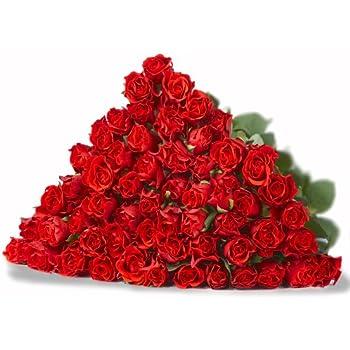 blumensversand blumen pur rote rosen aus afrika 20 st ck rote rosen pur mit gratis. Black Bedroom Furniture Sets. Home Design Ideas
