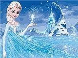 Shukqueen DIY Ölgemälde, Erwachsene 's Malen nach Zahlen Kits, Acryl Gemälde Ice Queen 40,6x 50,8cm, Queen Elsa, Framed Canvas