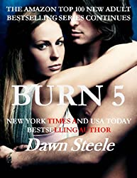 Burn 5: An Extremely Sensual New Adult Romance (English Edition)