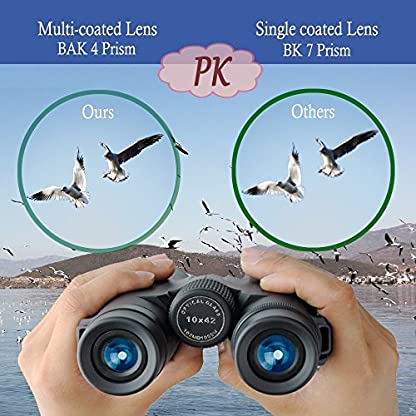 10x42 Binoculars for Bird Watching Travelling Landscape Stargazing Hunting Concerts Sports and Outdoor Games-BAK4 Prism Bright and Clear Optics- With Smartphone Digiscoping Adapter Strap Carrying Case