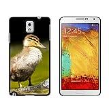 Baby Duck–Entchen–Snap on Hart Schutzhülle für Samsung Galaxy Note III 3