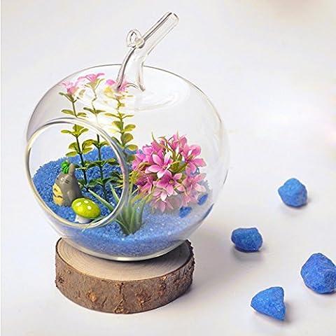Oeyfiea clair en forme de pomme à suspendre Boule en verre Plante Vase de fleurs 4.5cm Bouche