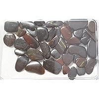 KRIO® - schöner Tigereisen in Kunststoffdose liebevoll abgepackt preisvergleich bei billige-tabletten.eu
