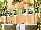 Weaeo Tapeten-Kundenspezifische Wandbildschönheit Der Vintagen Vines Umwickelte Gartenbar 3 D Im Freien Hölzerne Hintergrundwandtapete Des Sofas-400X280Cm