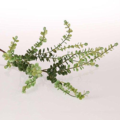 bahne Zweig mit Blättern