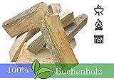 L.A. Garden Premium Feuerholz 20kg Buchenholz Brennholz ofenfertig kammergetrocknet – gespaltene Buche Holzscheite mit Anzündholz Holz für Lagerfeuer Feuerschale Kamin Ofen