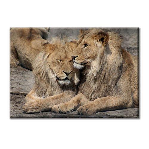 toile-de-peinture-cadre-dimpression-photographie-numerique-lions-troupeau-conduit-animaux-de-chasseu