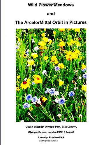 wild-flower-meadows-and-the-arcelormittal-orbit-in-pictures-volume-18