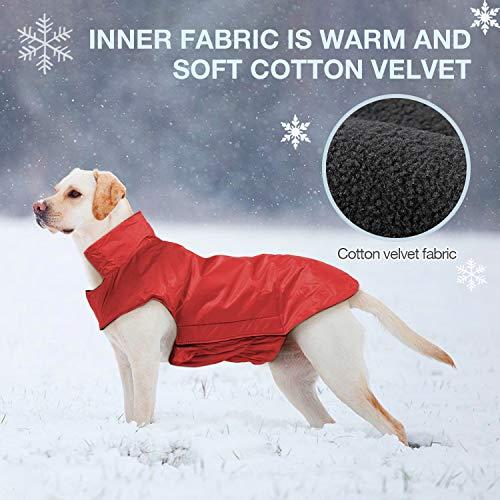 IREENUO Regenmantel Hunde, 100% Wasserdichter Hundemantel Regenjacke, mit Sicherheits Reflex Streifen, Geeignet für Outdoor-Bekleidung Mittlerer und Großer Hunde Rot-4XL - 3