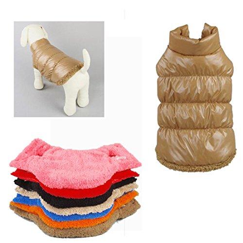 Rantow Herbst Winter Haustier Hund Katze kleidet warmen unten Mantel, 7 Farben klassisches Haustier Outwear Daunenjacke für Teddy, Yorkshire Terrier, Chihuahua, Pommern (XS, Brown) -