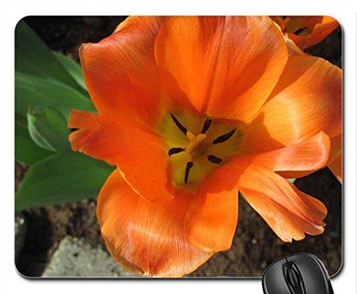 stagionale-celebrazioni-con-fiori-35-mouse-pad-mousepad-flowers-mouse-pad