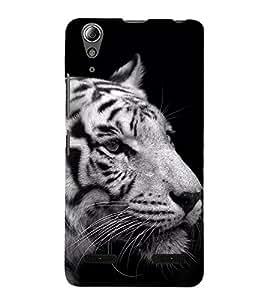 Lion on Rocks Designer Back Case Cover for Lenovo A6000 Plus