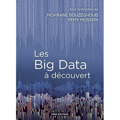 Les Big Data à découvert