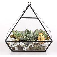 Vertebrale da appendere in metallo, motivo terrari da tavolo in vetro-Vaso da piante succulente, 15 cm, motivo: felce, colore: verde muschio