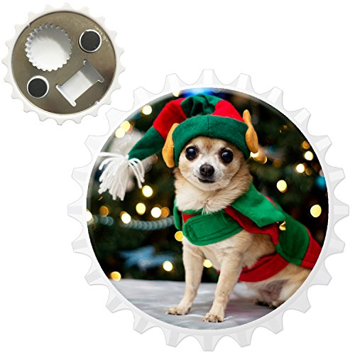 chihuahua-mexicain-taco-bell-chien-decapsuleur-aimant-pour-refrigerateur-chihuahua-dressed-as-elf-bo
