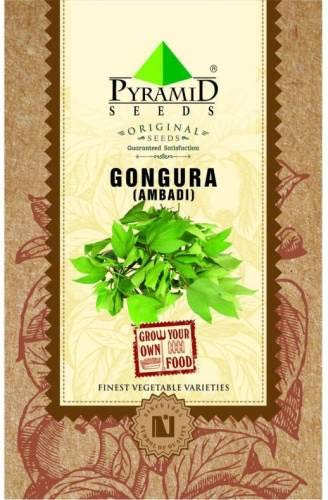 ShopMeeko SEED Gongura (Ambadi) Seed (200 pro Paket)