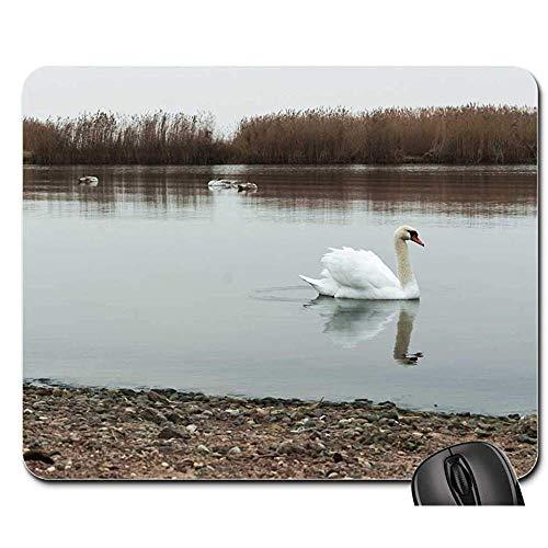 Speed Gaming Mouse Pad - Mausunterlage - Schwan-Schwimmen-Wasservogel-Weiße Schöne Schönheit