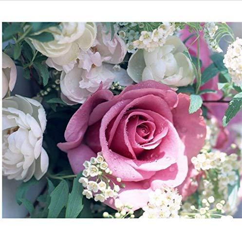 W-S Dekorative Gemälde Mosaik Handarbeit Geschenk Innen Kreuzstich Wohnkultur Bild Diamant Wild Rose 30X40 cm, Quadratischer Bohrer (Rose Führen Wild Wir)
