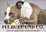 Pit Bull und Co. - Geliebt, gefürchtet, missverstanden (Wandkalender 2016 DIN A4 quer): Listenhunde zwischen Wahrheit und Hetze. (Monatskalender, 14 Seiten ) (CALVENDO Tiere)