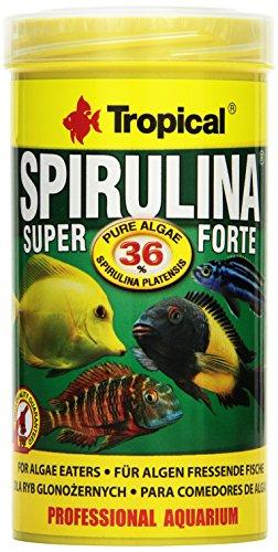 Tropical Super Spirulina Forte (36{476bb00eef9b70b434a6693b8c70fefabb5388a23eed492ea86bd21d21d364f7}) Flockenfutter, 1er Pack (1 x 250 ml)