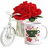 TiedRibbons® Combo Gift For Girl Friend Cycle Vase With Bunches Of Rose And Valentine Special Coffee Mug(325ml)