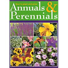 How to Plant and Grow Annuals and Perennials