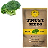 Trust Basket Brocoli Vegetable Seeds (GMO Free)