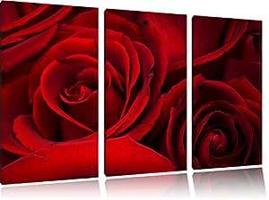 rose rosse in 3 pezzi immagine Foresta tela 120x80 su tela, Immagini XXL completamente incorniciato con grandi cornici di cuneo, stampe d'arte sulla foto parete con telaio, gänstiger come un quadro o un dipinto a olio, non un manifesto o cart