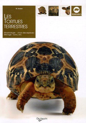 Les tortues terrestres par M Avanzi