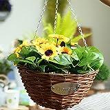 cestello per fioriera appeso, cesto di vimini cesto per fiori in rattan intrecciato con gancio e catena cesto per fioriera decorativo per piante da interno, set di 2