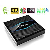 SHENGY H96 Mini 2.4G / 5G WiFi 4K HDTV Box, Quad Core 2GB RAM 16 GB Rom iptv Smart TV, Supporto per Android 7.1 Bluetooth 4.0 Multi-Lingua,US