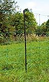 OviNet Elektrifizierbares Schafnetz für den universellen Einsatz, grün, 90 cm
