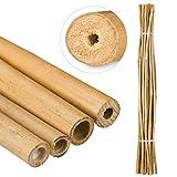 Relaxdays Bambusstäbe 150cm, aus natürlichem Bambus, 25 Stück, Bambusstangen als Rankhilfe oder Deko, zum Basteln, natur -