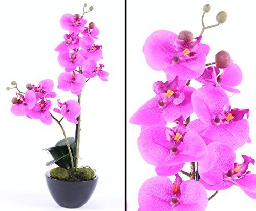 Kunstpflanze künstliche Orchidee