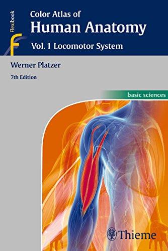 Color Atlas of Human Anatomy: Vol. 1: Locomotor System by Werner Platzer (23-Dec-2014) Paperback