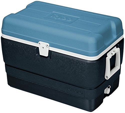 igloo-maxcold-50-glacire-bleu
