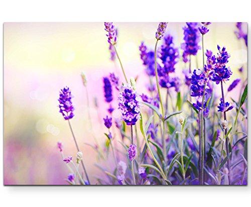 Eau Zone Wandbild auf Leinwand 120x80cm Lavendel im Sonnenschein