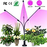 semai Pflanzenlampe LED 30W Pflanzenlicht Pflanzenleuchte Wachstumslampe Wachsen licht Grow Lampe Vollspektrum für...