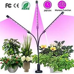 LED 30W Pflanzenlicht