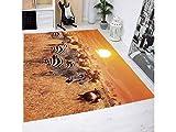 Oedim Teppich Zebramuster Multicolor PVC| 95x95cm | PVC-Teppich | Vinylboden | Dekoration